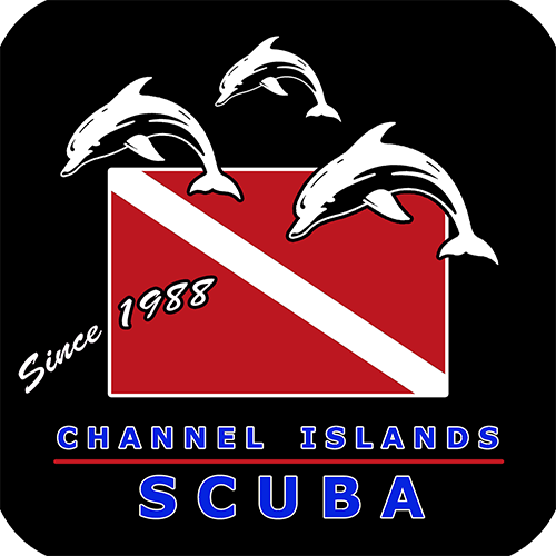 Channel Island Logo